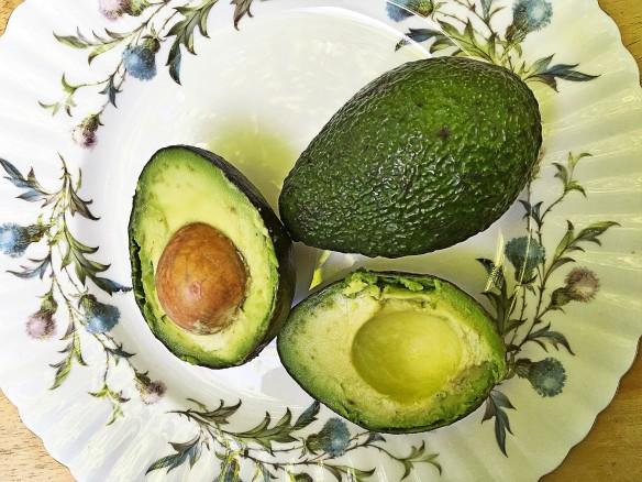 avocadomine