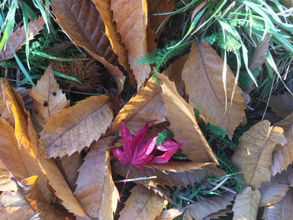 Leafmixture