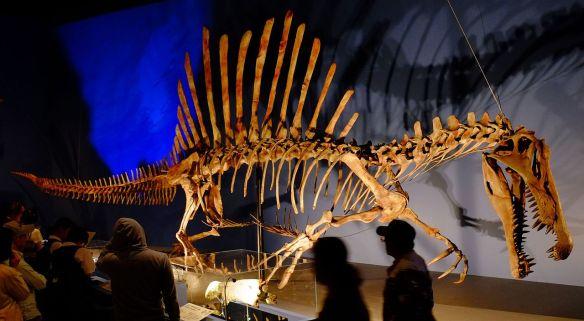 Spinosaurus_in_Japan_Expo