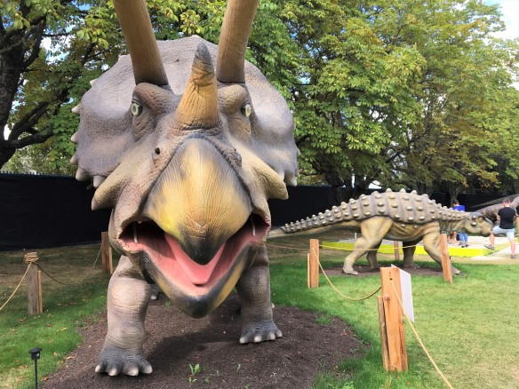 Triceratops front