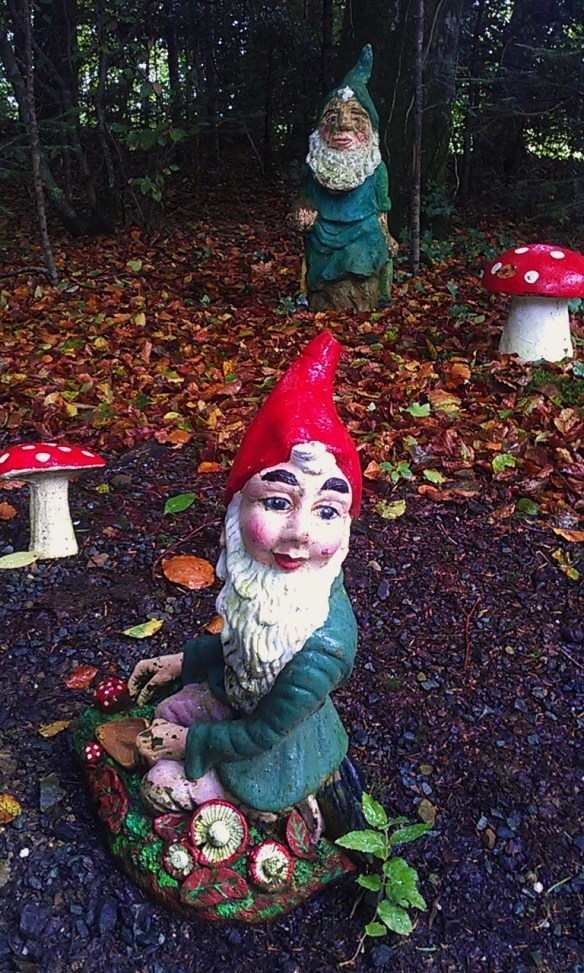 Garden_Gnome_at_Gnome_Reserve