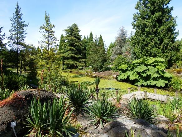 VanDusen Garden 3